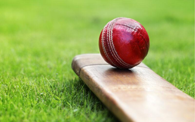 cricket, stockmarket, green energy