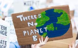 green revolution, environment