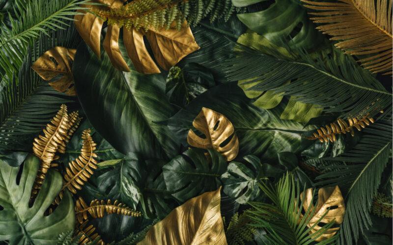 green, gold, green agenda, environmental movement
