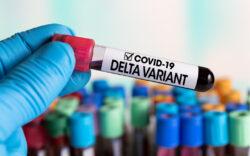 delta variant, financial crisis, covid 19, covid
